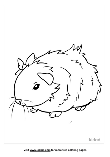 guinea pig coloring pages_5_lg.png