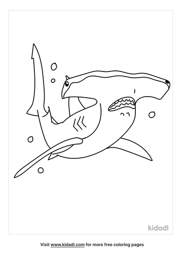 hammerhead-shark-coloring-page-2.png