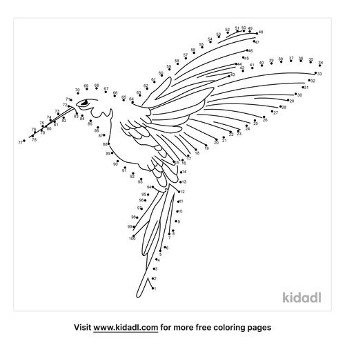 hard-hummingbird-dot-to-dot