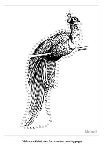 hard-peacock-dot-to-dot