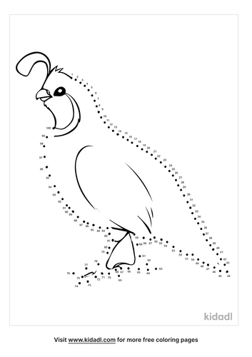 hard-quail-dot-to-dot