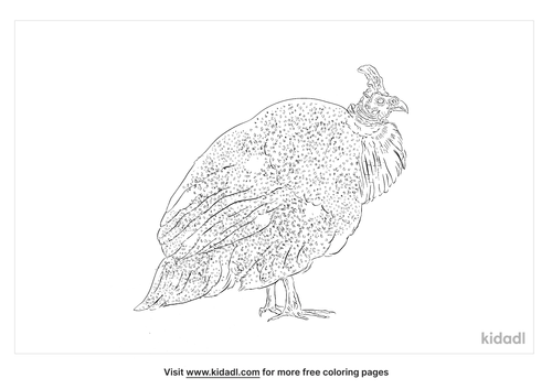 helmeted-guineafowl-coloring-page