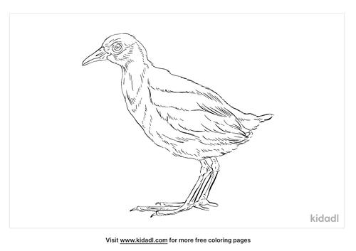 henderson-crake-coloring-page