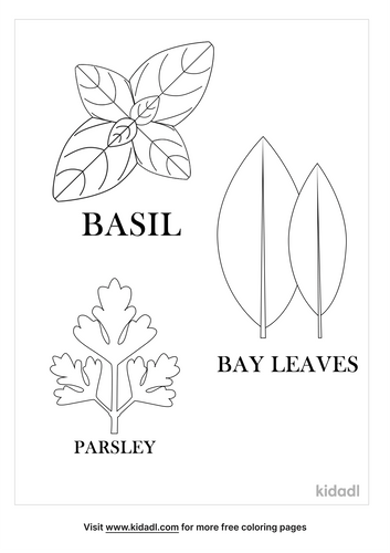 herb-coloring-pages-1-lg.png