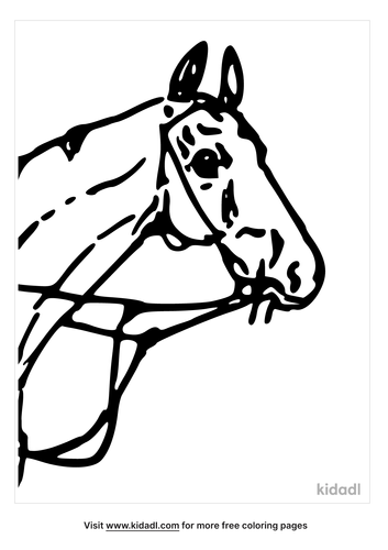 horse-head-coloring-page-4.png