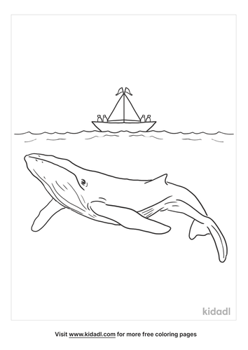 humpback-whale-coloring-page-5.png