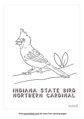indiana-coloring-page-3.png