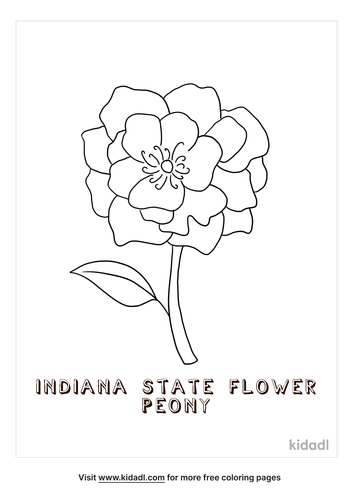 indiana-coloring-page-5.png