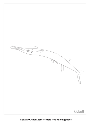 indonesian-needlefish-coloring-page.png