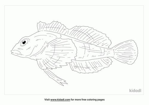 irish-lord-fish-coloring-page