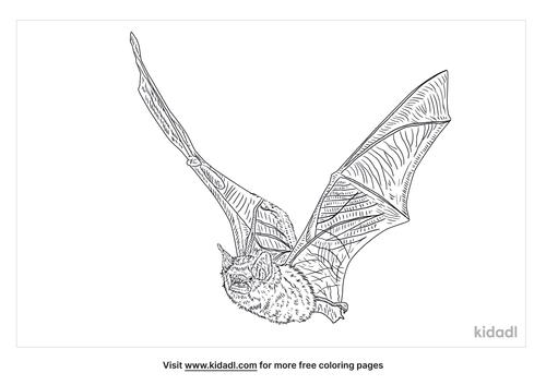 jamaican-fruit-bat-coloring-page