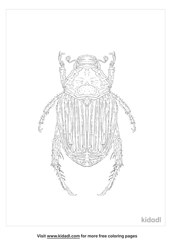 japanese-beetle-coloring-page