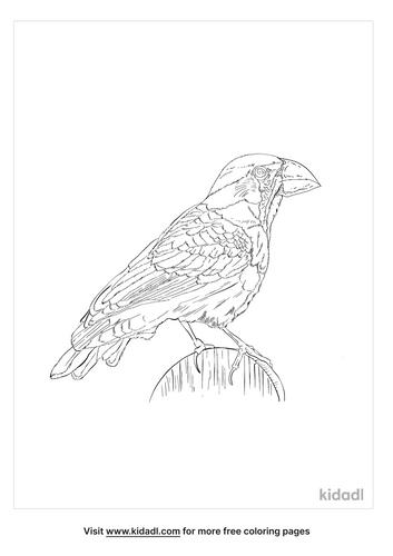 japanese-grosbeak-coloring-page