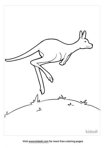 kangaroo coloring page_2_lg.png