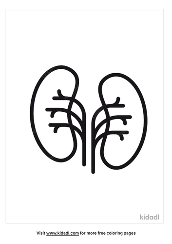 kidney-coloring-page-5.png