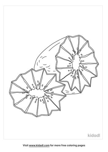 kiwi-coloring-page-4.png