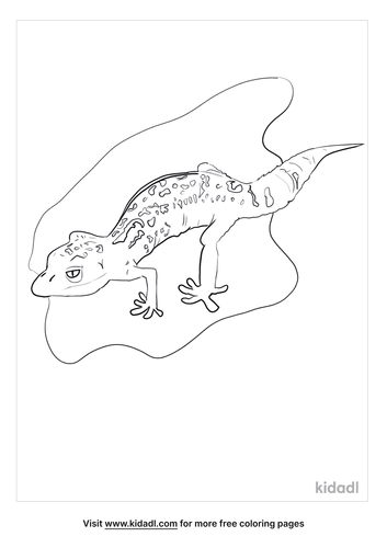 leopard-gecko-coloring-page.png