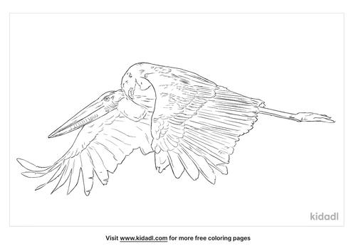 lesser-adjutant-coloring-page