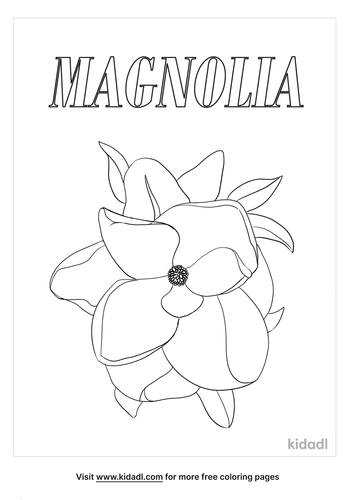 louisiana state flower coloring page_lg.png