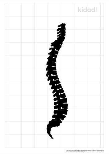 lumbar-spine-stencil.png
