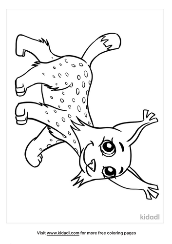lynx picture-2-lg.png
