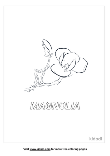 magnolia-coloring-page-1.png