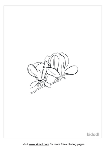 magnolia-coloring-page-3.png