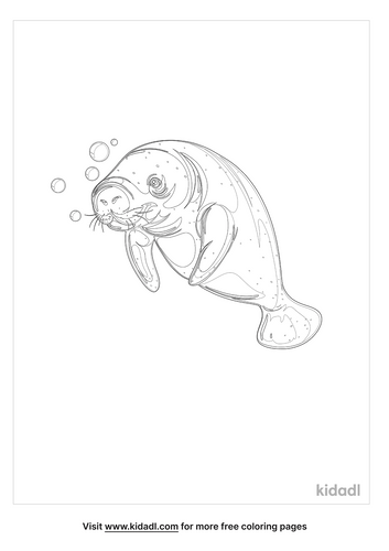 manatee-coloring-page-4.png
