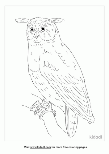 maned-owl-coloring-page