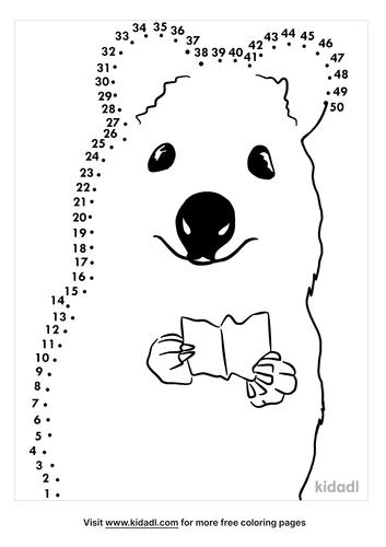 medium-australian-animals-dot-to-dot