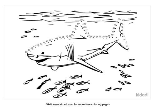 medium-black-tip-shark-dot-to-dot