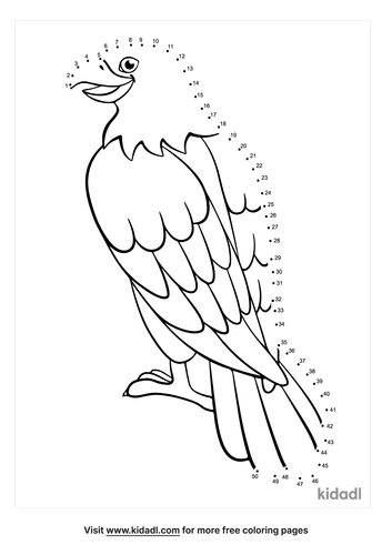 medium-cute-cartoon-eagle-dot-to-dot