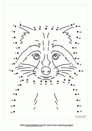 medium-cute-racoon-dot-to-dot