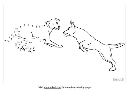 medium-dogs-playing-dot-to-dot