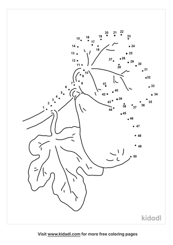 medium-fig-tree-dot-to-dot