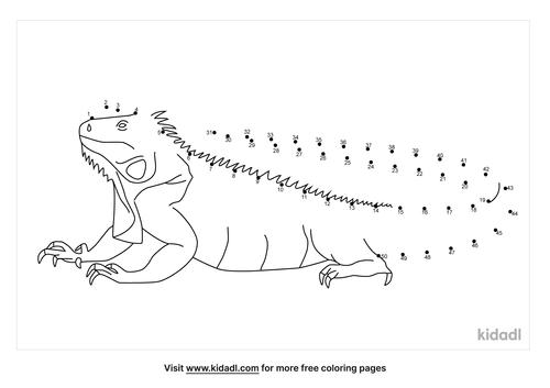 medium-iguana-dot-to-dot