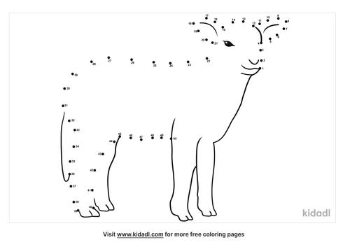 medium-lamb-dot-to-dot
