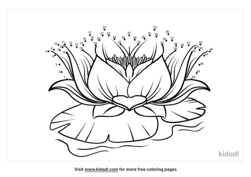 medium-lotus-dot-to-dot