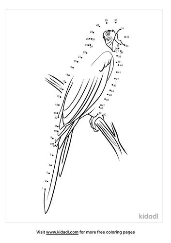 medium-macaw-parrot-dot-to-dot