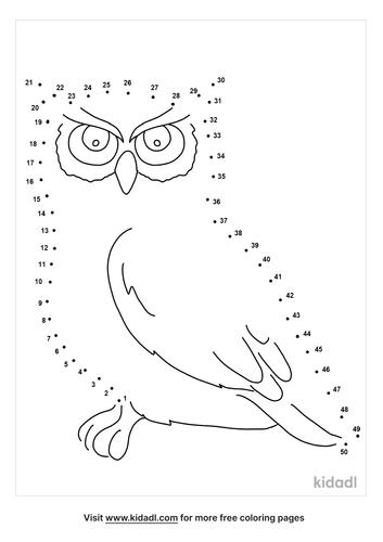 medium-owl-dot-to-dot