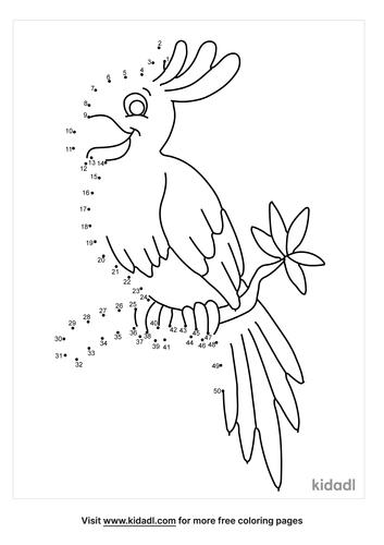 medium-parakeet-dot-to-dot