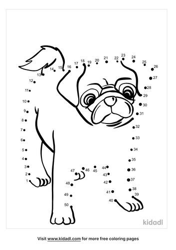 medium-pug-dot-to-dot