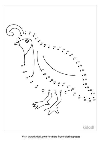 medium-quail-dot-to-dot