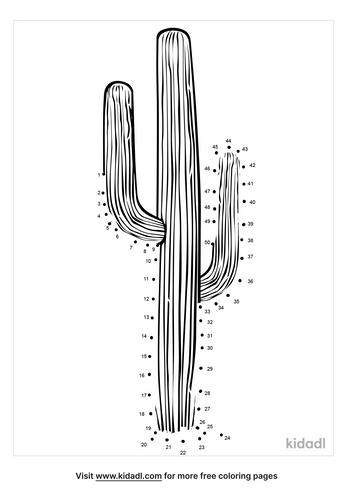 medium-saguaro-dot-to-dot
