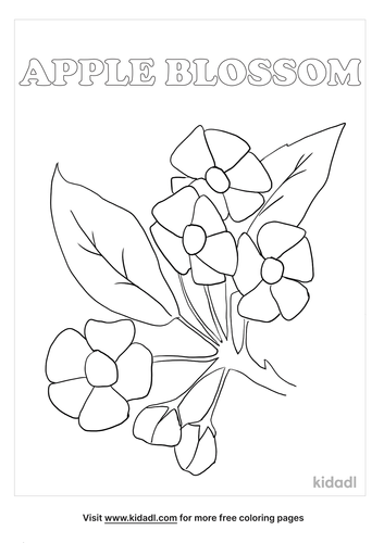 michigan state flower coloring page_lg.png
