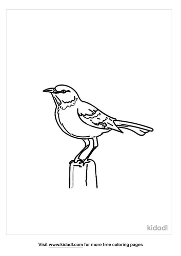 mockingbird-coloring-page-4.png