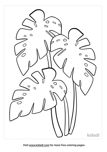 monstera leaf coloring page-lg.png