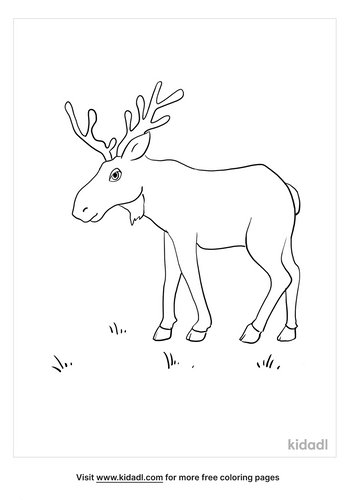 moose coloring picture_2_lg.png