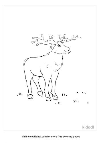 moose coloring picture_3_lg.png