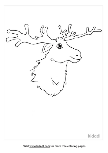 moose coloring picture_4_lg.png